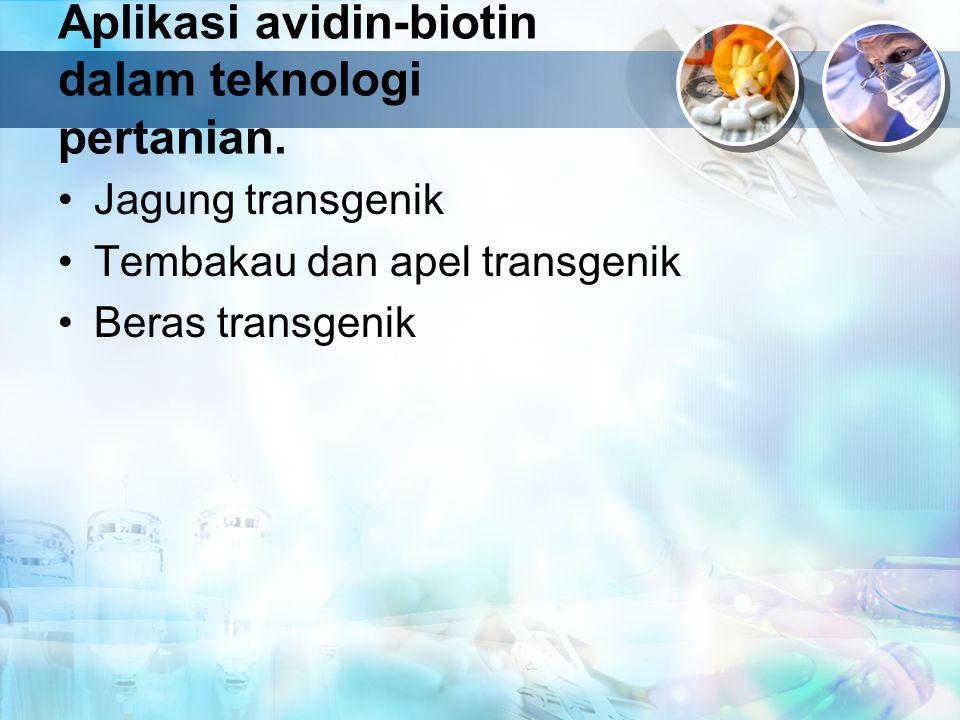 Aplikasi avidin-biotin dalam teknologi pertanian. Jagung transgenik Tembakau dan apel transgenik Beras transgenik