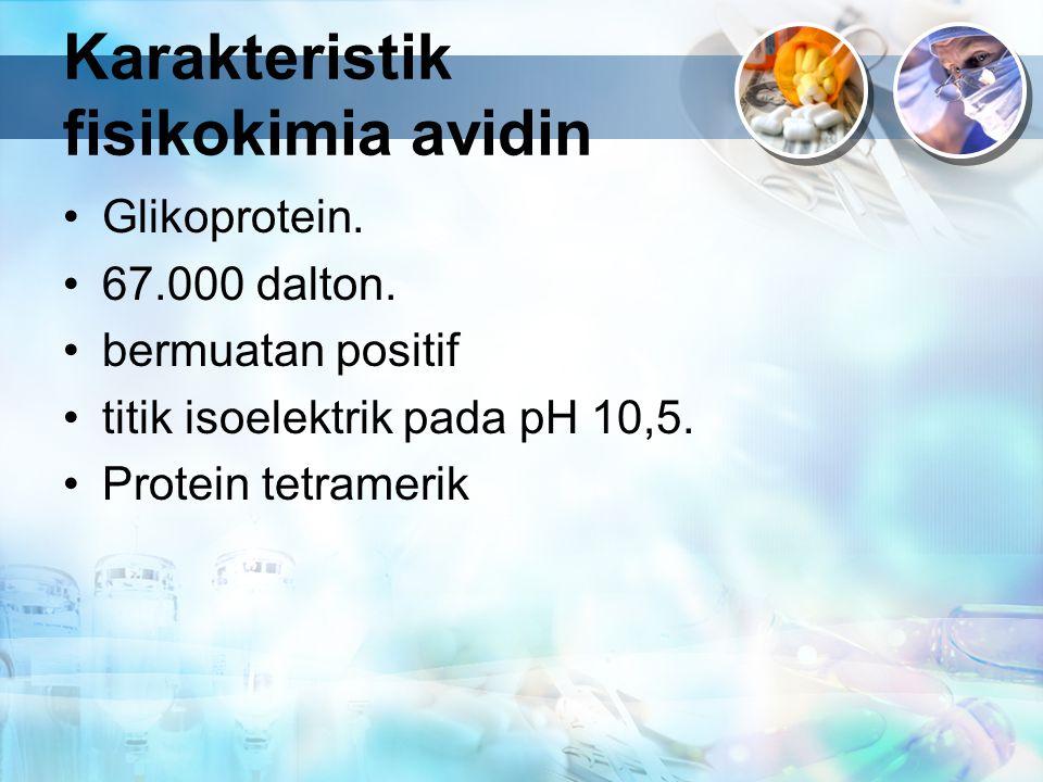 Karakteristik fisikokimia avidin Glikoprotein. 67.000 dalton. bermuatan positif titik isoelektrik pada pH 10,5. Protein tetramerik