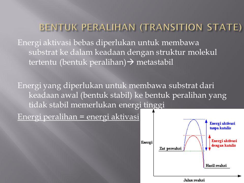 Energi aktivasi bebas diperlukan untuk membawa substrat ke dalam keadaan dengan struktur molekul tertentu (bentuk peralihan)  metastabil Energi yang diperlukan untuk membawa substrat dari keadaan awal (bentuk stabil) ke bentuk peralihan yang tidak stabil memerlukan energi tinggi Energi peralihan = energi aktivasi