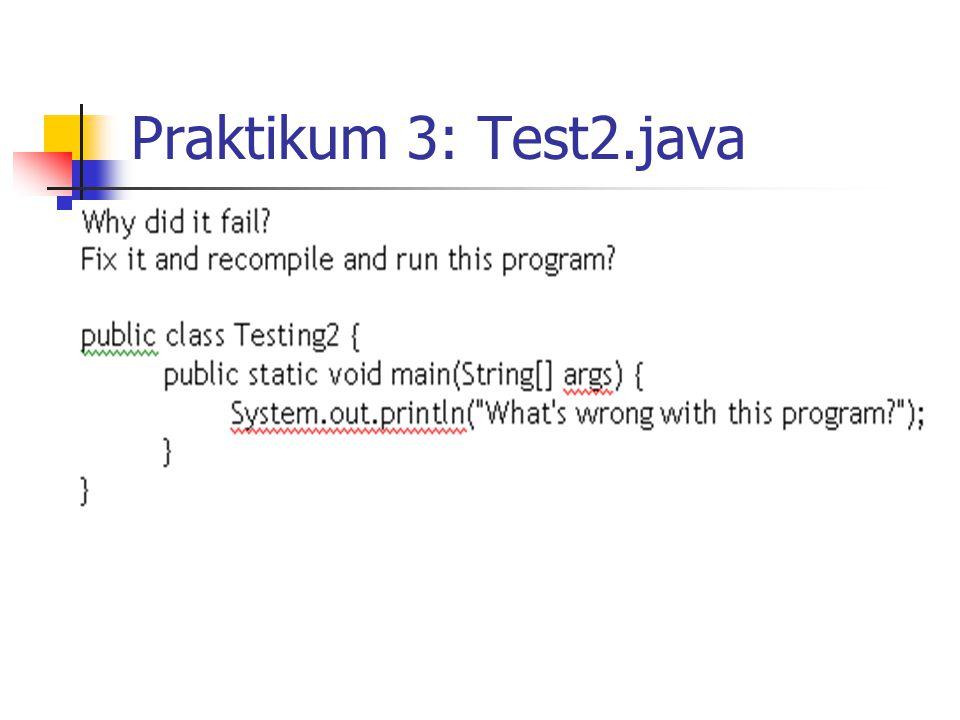 Praktikum 4: Test3.java
