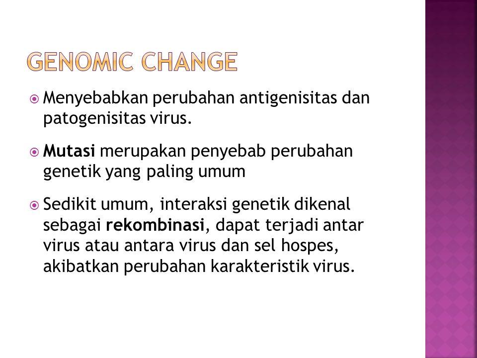  Menyebabkan perubahan antigenisitas dan patogenisitas virus.