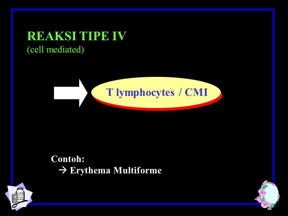 REAKSI TIPE IV (cell mediated) Contoh:  Erythema Multiforme T lymphocytes / CMI
