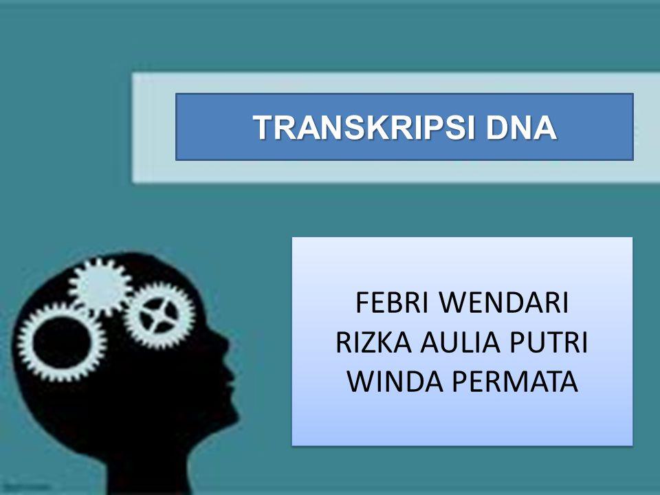 FEBRI WENDARI RIZKA AULIA PUTRI WINDA PERMATA FEBRI WENDARI RIZKA AULIA PUTRI WINDA PERMATA TRANSKRIPSI DNA