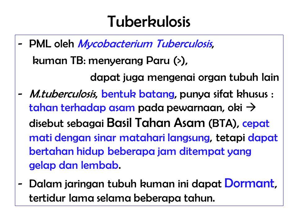 Tuberkulosis -PML oleh Mycobacterium Tuberculosis, kuman TB: menyerang Paru (>), dapat juga mengenai organ tubuh lain -M.tuberculosis, bentuk batang,
