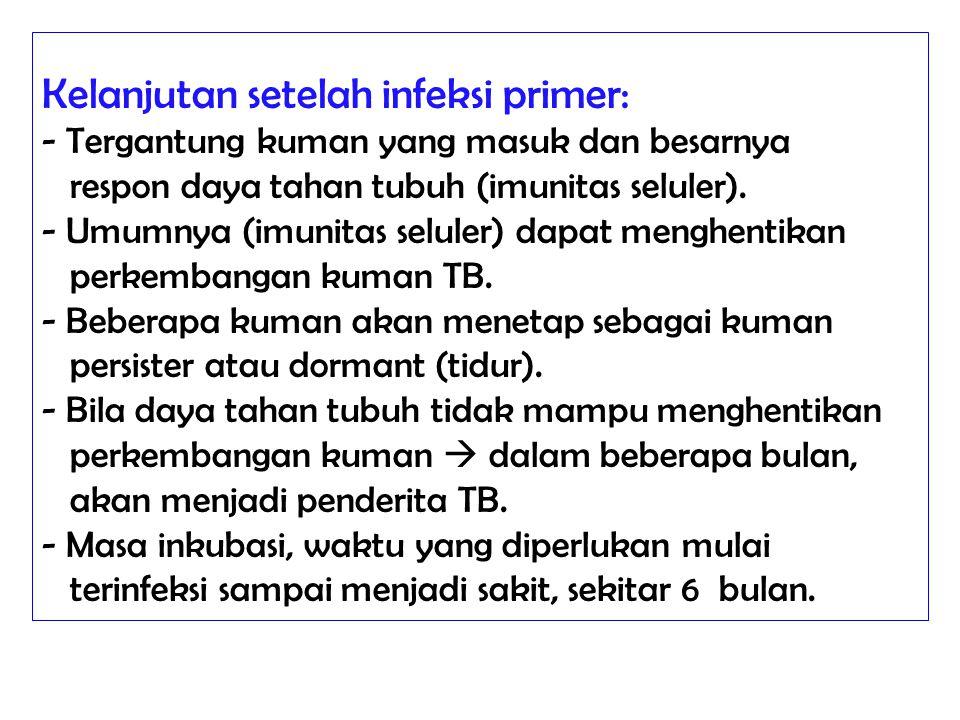 Kelanjutan setelah infeksi primer: - Tergantung kuman yang masuk dan besarnya respon daya tahan tubuh (imunitas seluler). - Umumnya (imunitas seluler)