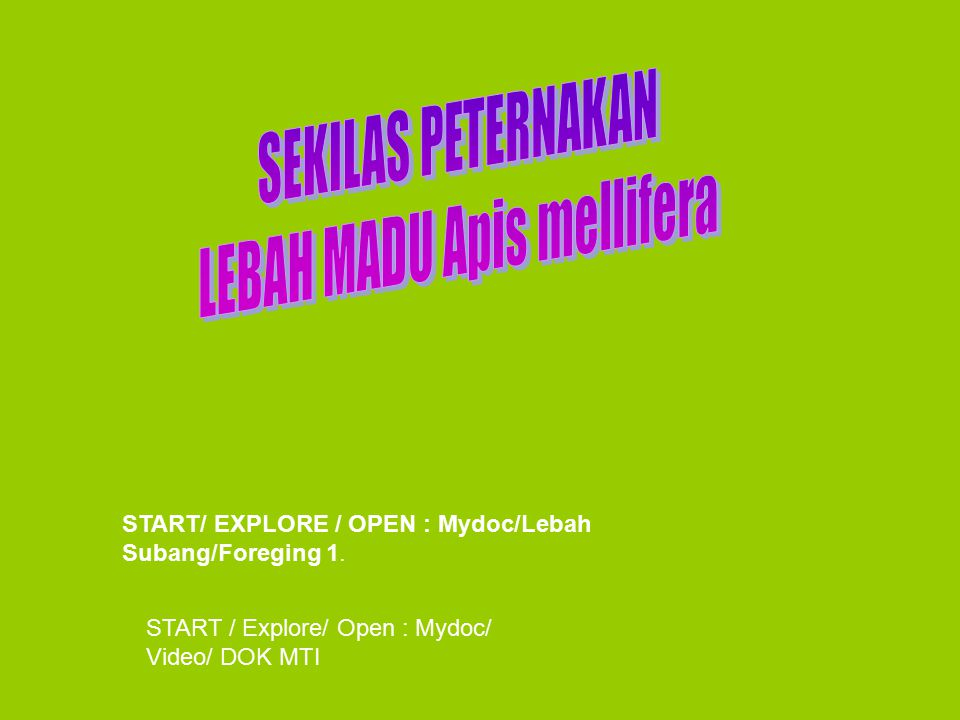START/ EXPLORE / OPEN : Mydoc/Lebah Subang/Foreging 1.
