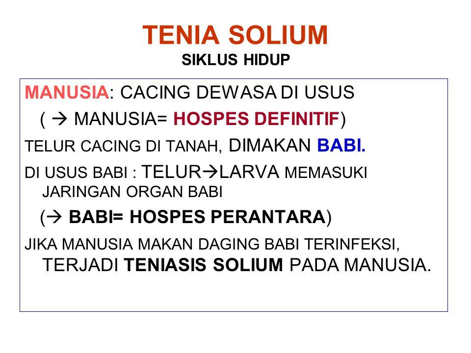TENIA SOLIUM SIKLUS HIDUP MANUSIA: CACING DEWASA DI USUS (  MANUSIA= HOSPES DEFINITIF) TELUR CACING DI TANAH, DIMAKAN BABI. DI USUS BABI : TELUR  LA