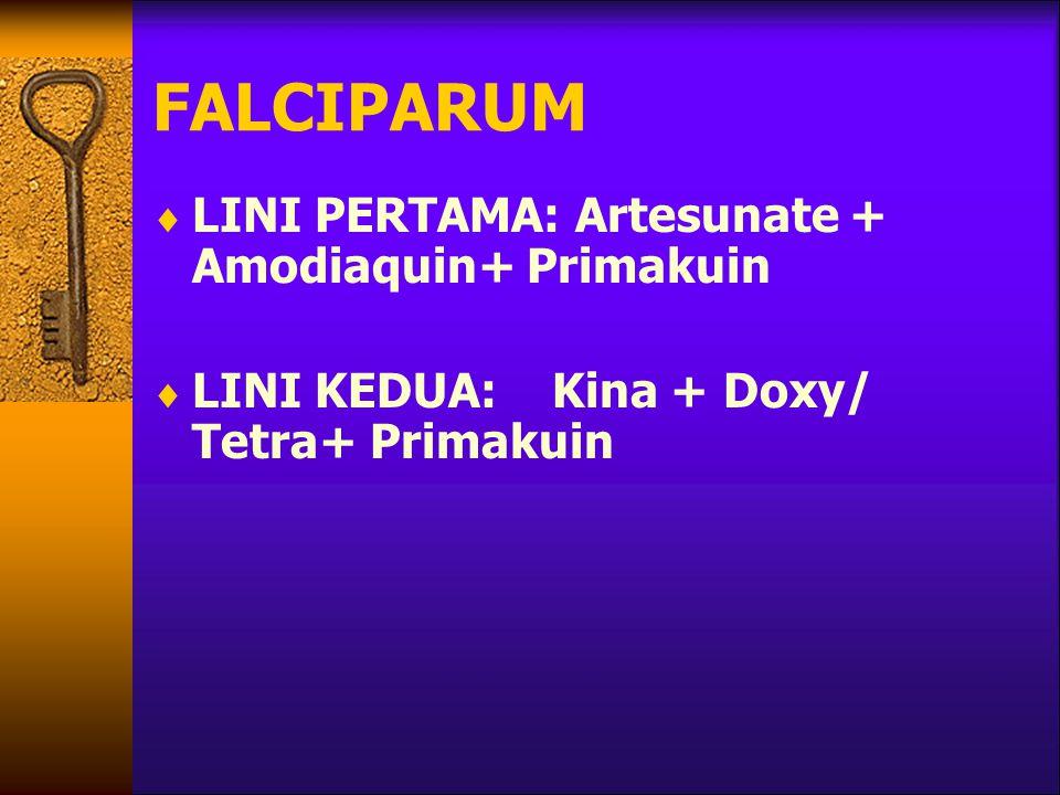 FALCIPARUM  LINI PERTAMA: Artesunate + Amodiaquin+ Primakuin  LINI KEDUA: Kina + Doxy/ Tetra+ Primakuin