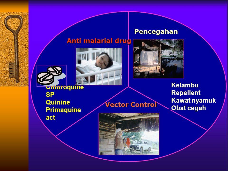 Anti malarial drug Chloroquine SP Quinine Primaquine act Pencegahan Vector Control Kelambu Repellent Kawat nyamuk Obat cegah
