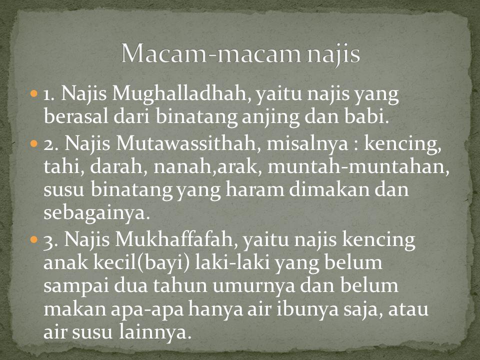 1. Najis Mughalladhah, yaitu najis yang berasal dari binatang anjing dan babi. 2. Najis Mutawassithah, misalnya : kencing, tahi, darah, nanah,arak, mu