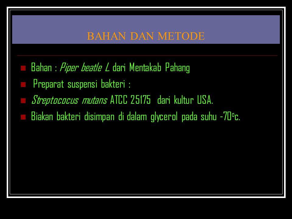 BAHAN DAN METODE Bahan : Piper beatle L. dari Mentakab Pahang Preparat suspensi bakteri : Streptococus mutans ATCC 25175 dari kultur USA. Biakan bakte