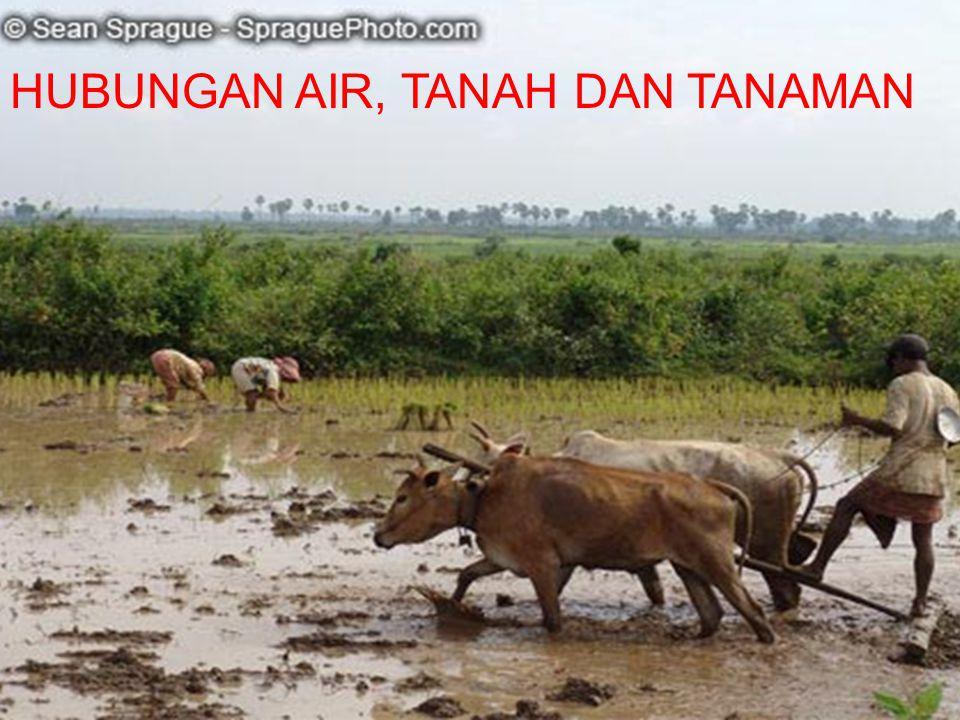 HUBUNGAN AIR, TANAH DAN TANAMAN