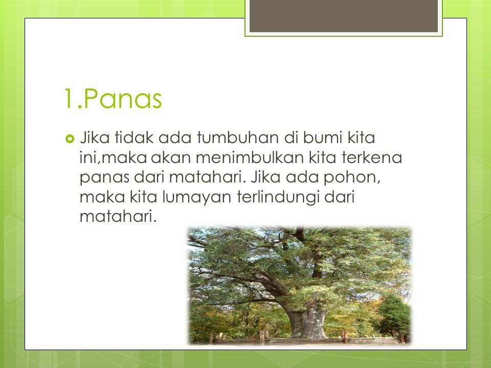 1.Panas  Jika tidak ada tumbuhan di bumi kita ini,maka akan menimbulkan kita terkena panas dari matahari. Jika ada pohon, maka kita lumayan terlindun