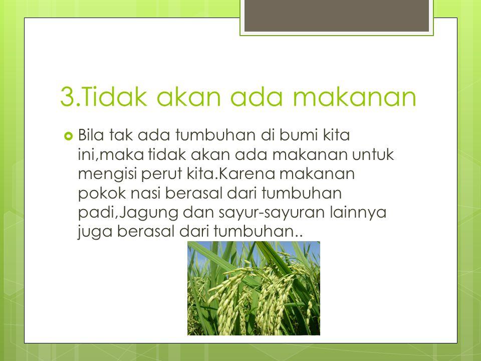 3.Tidak akan ada makanan  Bila tak ada tumbuhan di bumi kita ini,maka tidak akan ada makanan untuk mengisi perut kita.Karena makanan pokok nasi beras