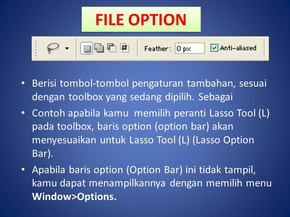 FILE OPTION Berisi tombol-tombol pengaturan tambahan, sesuai dengan toolbox yang sedang dipilih. Sebagai Contoh apabila kamu memilih peranti Lasso Too