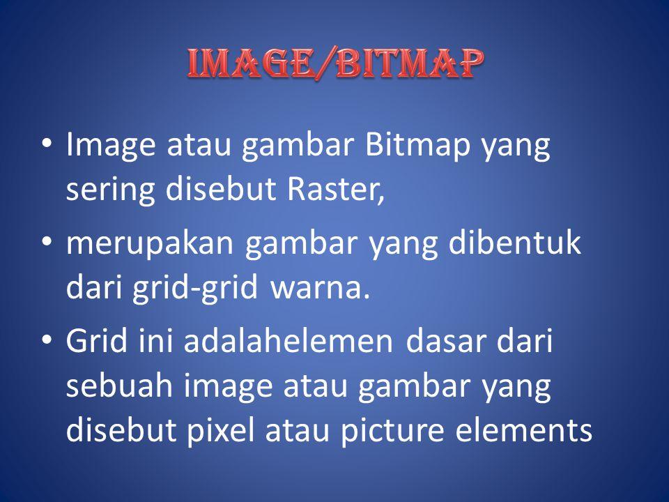Image atau gambar Bitmap yang sering disebut Raster, merupakan gambar yang dibentuk dari grid-grid warna. Grid ini adalahelemen dasar dari sebuah imag