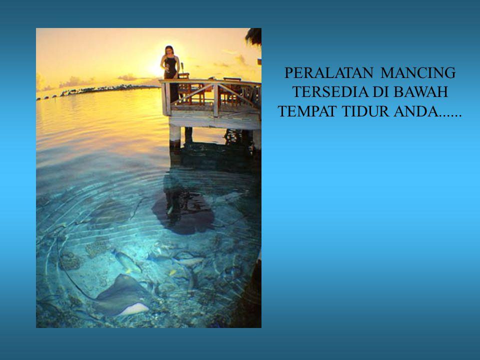 PERALATAN MANCING TERSEDIA DI BAWAH TEMPAT TIDUR ANDA......