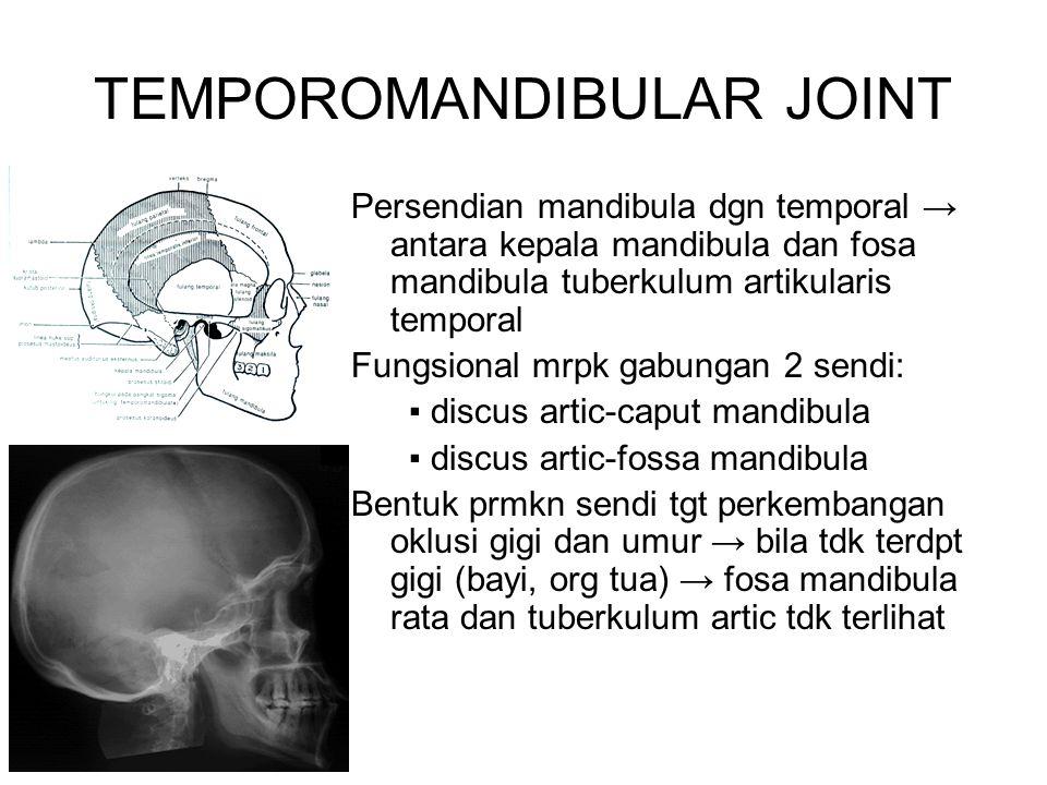 Persendian mandibula dgn temporal → antara kepala mandibula dan fosa mandibula tuberkulum artikularis temporal Fungsional mrpk gabungan 2 sendi: ▪ dis