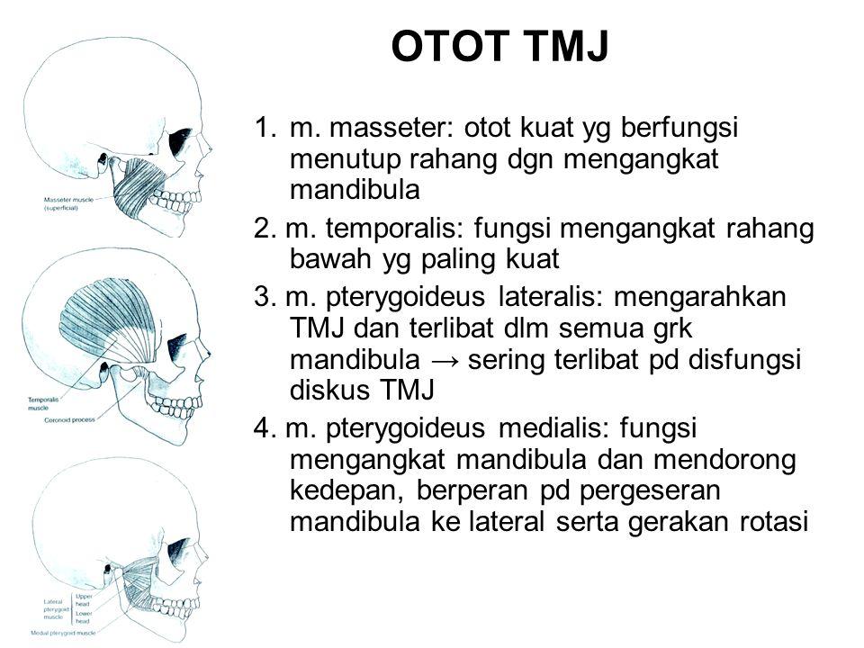 OTOT TMJ 1.m. masseter: otot kuat yg berfungsi menutup rahang dgn mengangkat mandibula 2. m. temporalis: fungsi mengangkat rahang bawah yg paling kuat