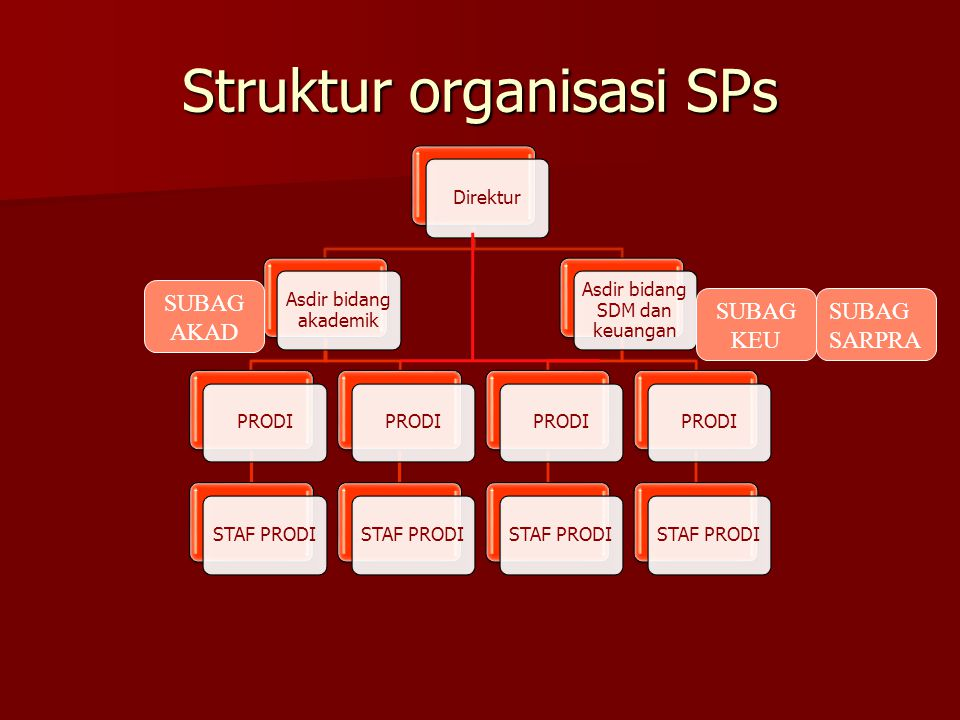 Struktur organisasi SPs Direktur Asdir bidang akademik PRODISTAF PRODIPRODISTAF PRODI Asdir bidang SDM dan keuangan PRODISTAF PRODIPRODISTAF PRODI SUB