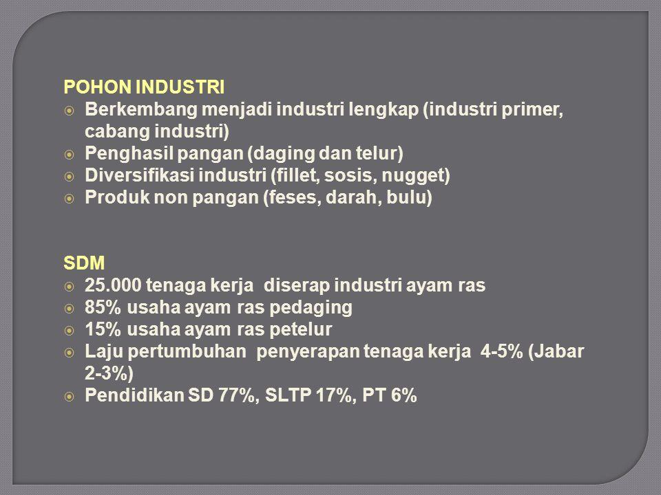 POHON INDUSTRI  Berkembang menjadi industri lengkap (industri primer, cabang industri)  Penghasil pangan (daging dan telur)  Diversifikasi industri