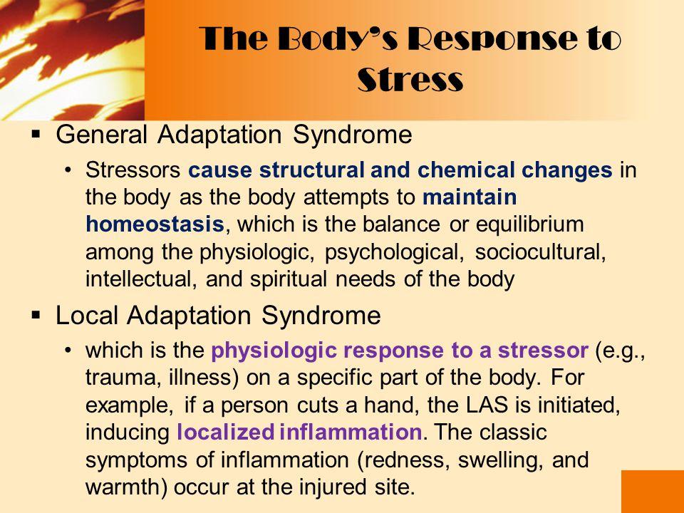 Stress sebagai Transaksi  Teori transaksi stress mencakup respon kognitif, afektif dan adaptasi yg muncul merupakan akibat transaksi antara individu