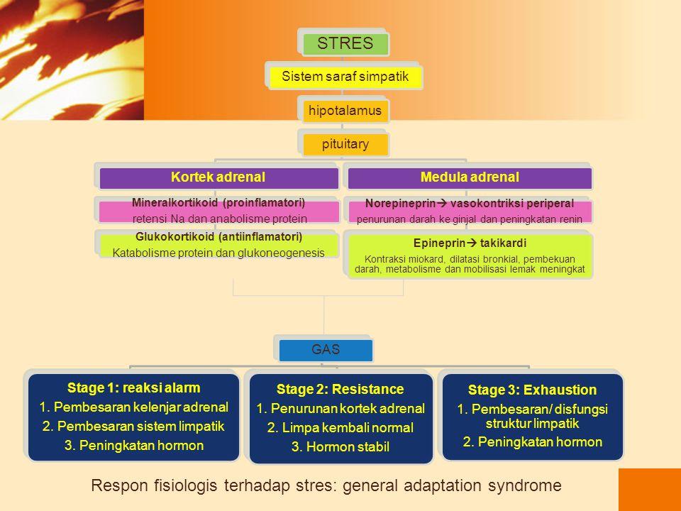 Alarm reaction: sinyal pertahanan tubuh terhadap stresor Phase shock: reaksi sistem saraf otonom (1 menit-24 jam pertama) cortisonepineprin Phase coun