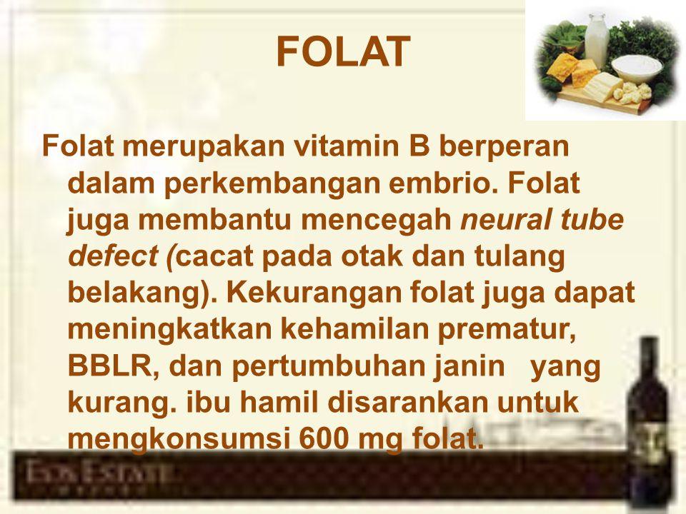 FOLAT Folat merupakan vitamin B berperan dalam perkembangan embrio.