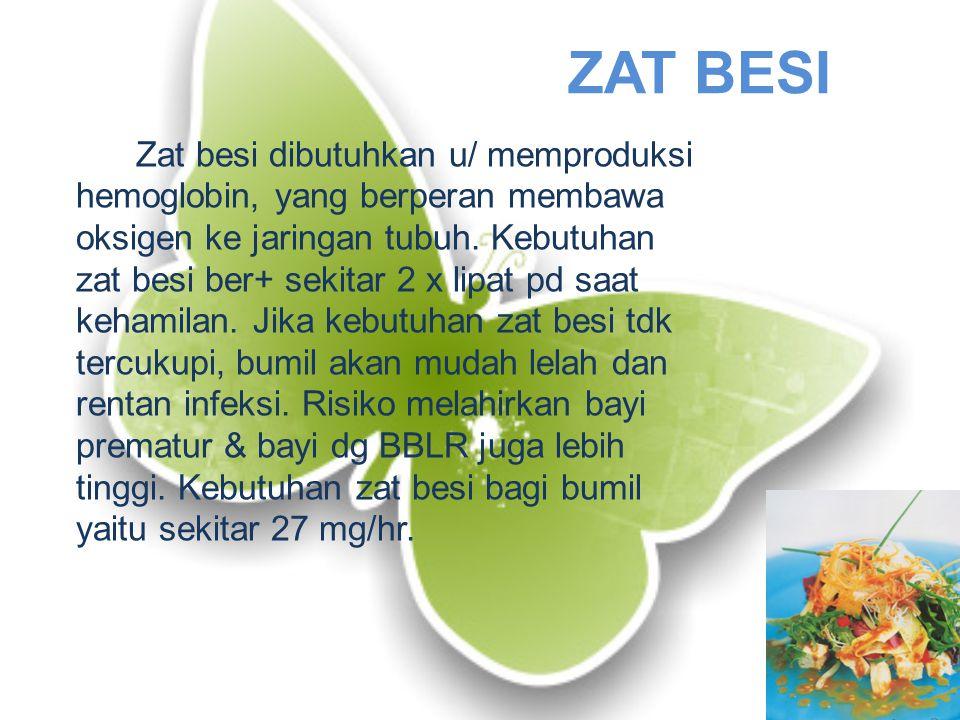 ZAT BESI Zat besi dibutuhkan u/ memproduksi hemoglobin, yang berperan membawa oksigen ke jaringan tubuh.