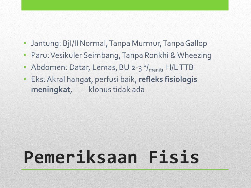 Pemeriksaan Fisis Jantung: BjI/II Normal, Tanpa Murmur, Tanpa Gallop Paru: Vesikuler Seimbang, Tanpa Ronkhi & Wheezing Abdomen: Datar, Lemas, BU 2-3 x