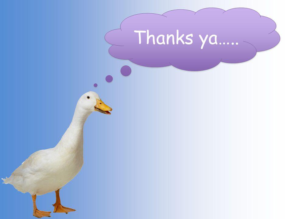 Thanks ya…..