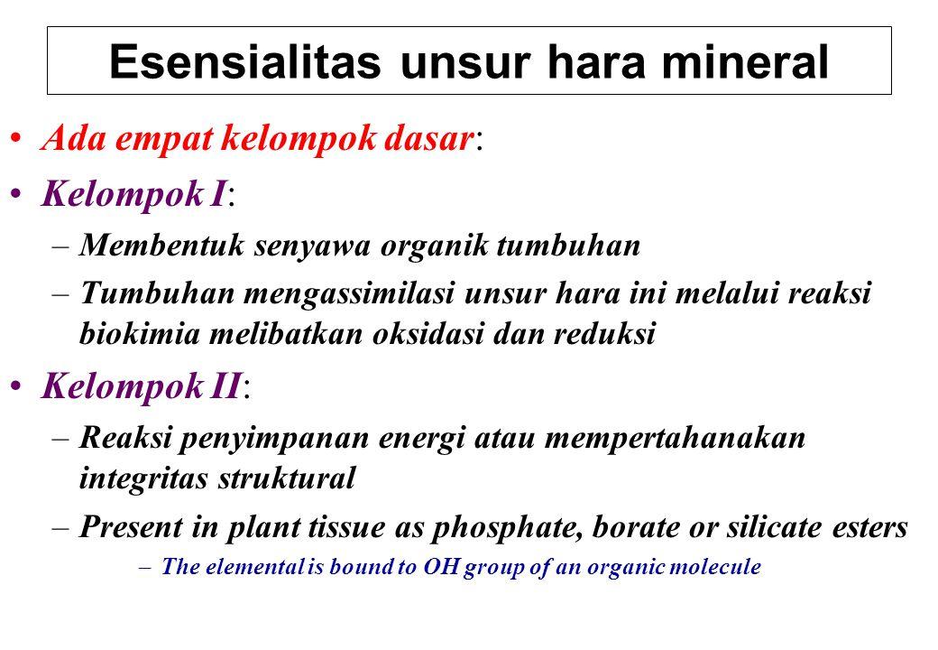 Ada empat kelompok dasar: Kelompok I: –Membentuk senyawa organik tumbuhan –Tumbuhan mengassimilasi unsur hara ini melalui reaksi biokimia melibatkan o