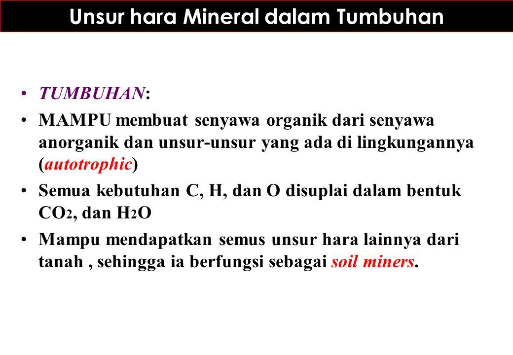 Unsur hara Mineral dalam Tumbuhan TUMBUHAN: MAMPU membuat senyawa organik dari senyawa anorganik dan unsur-unsur yang ada di lingkungannya (autotrophi