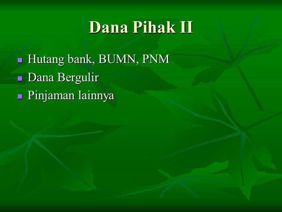 Dana Pihak II Hutang bank, BUMN, PNM Hutang bank, BUMN, PNM Dana Bergulir Dana Bergulir Pinjaman lainnya Pinjaman lainnya