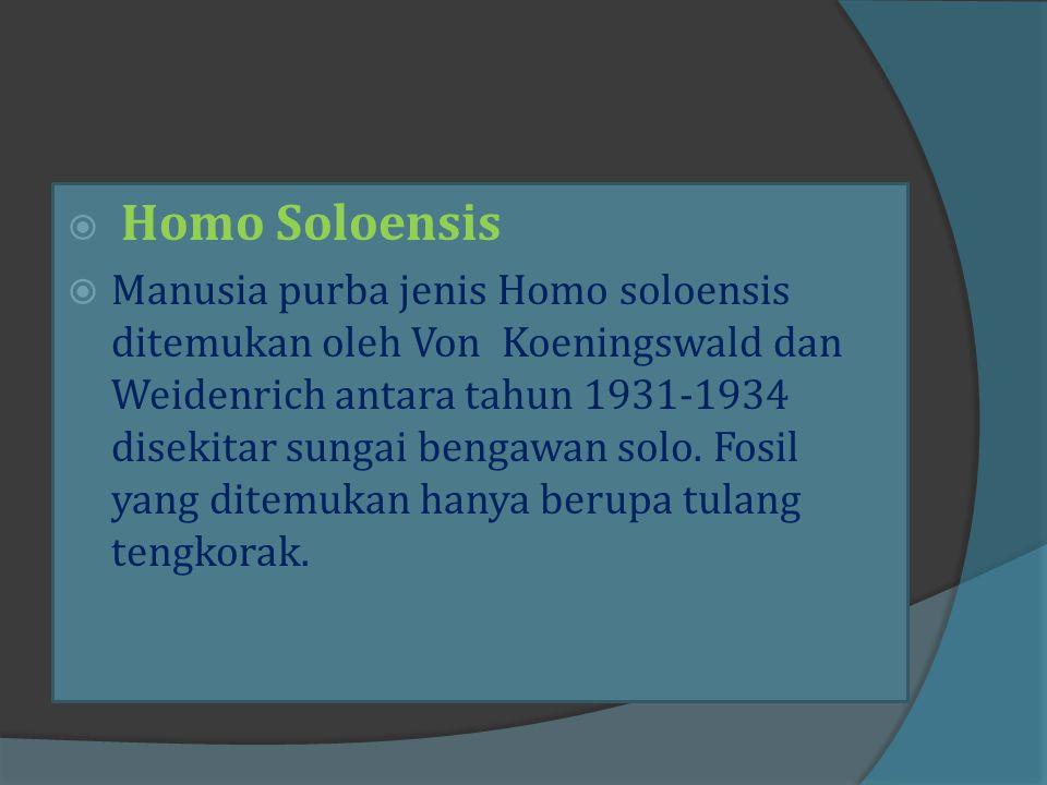 Homo Sapiens merupakan manusia yang paling maju dan paling cerdik. Homo Sapiens, artinya manusia yang cerdas. Homo Sapiens hidup pada masa Holosen dan