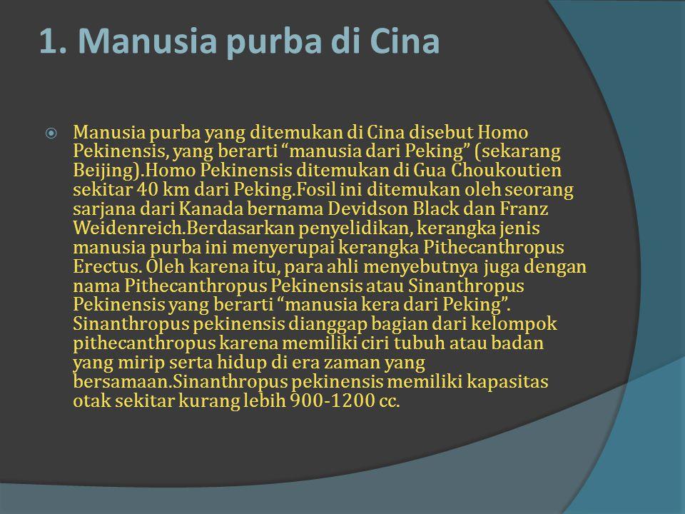 Jenis-Jenis Manusia Purba di Dunia Manusia Prasejarah di Asia, Afrika, dan Eropa