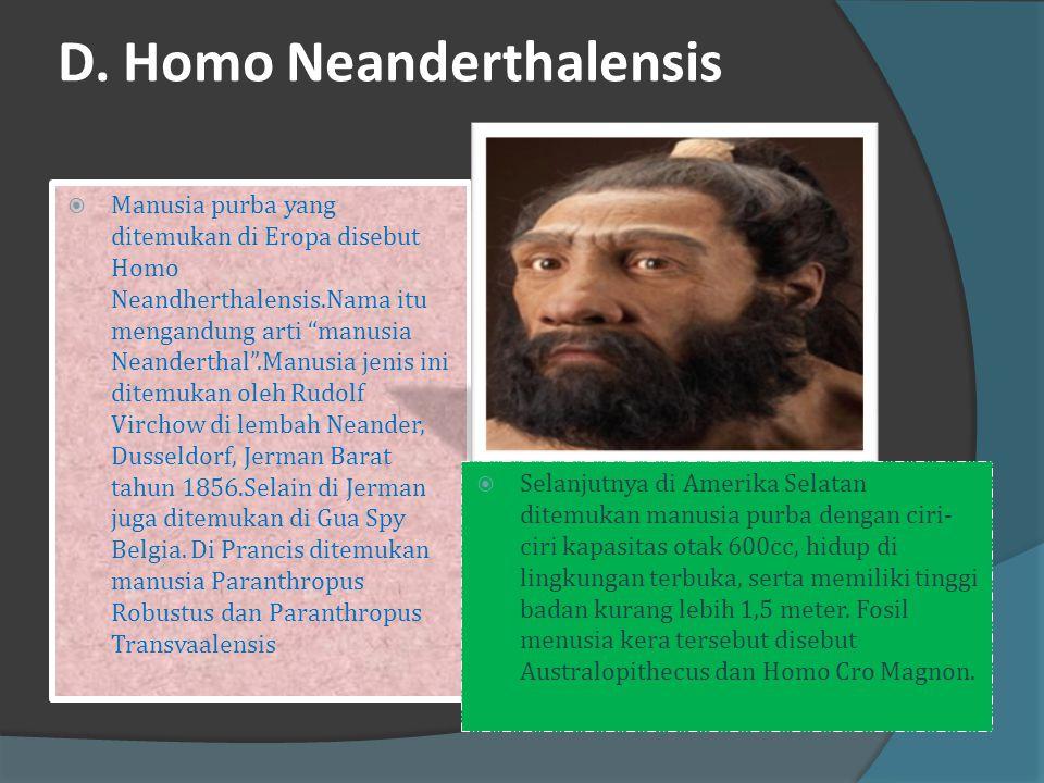 C. Homo Heidelbergensis  Ditemukan oleh Dr. Schoetensack di desa Maurer dekat kota Heidelberg (Jerman).