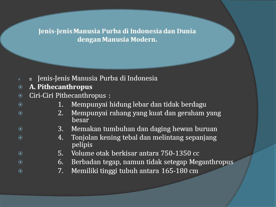 Manusia Purba di Indonesia dan Dunia  Jenis manusia purba yang ditemukan di Indonesia memiliki usia yang sudah tua, hampir sama dengan penemuan manus