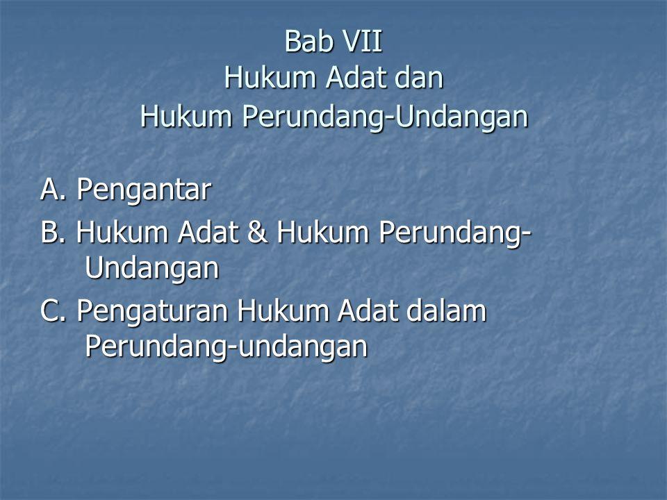 Bab VII Hukum Adat dan Hukum Perundang-Undangan A. Pengantar B. Hukum Adat & Hukum Perundang- Undangan C. Pengaturan Hukum Adat dalam Perundang-undang