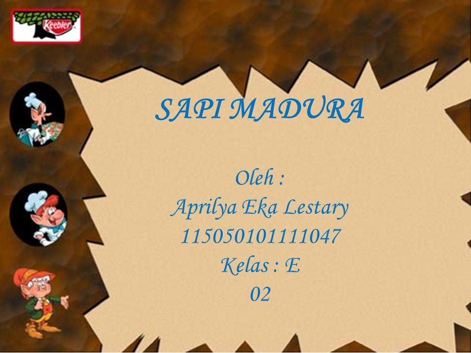 SAPI MADURA Oleh : Aprilya Eka Lestary 115050101111047 Kelas : E 02