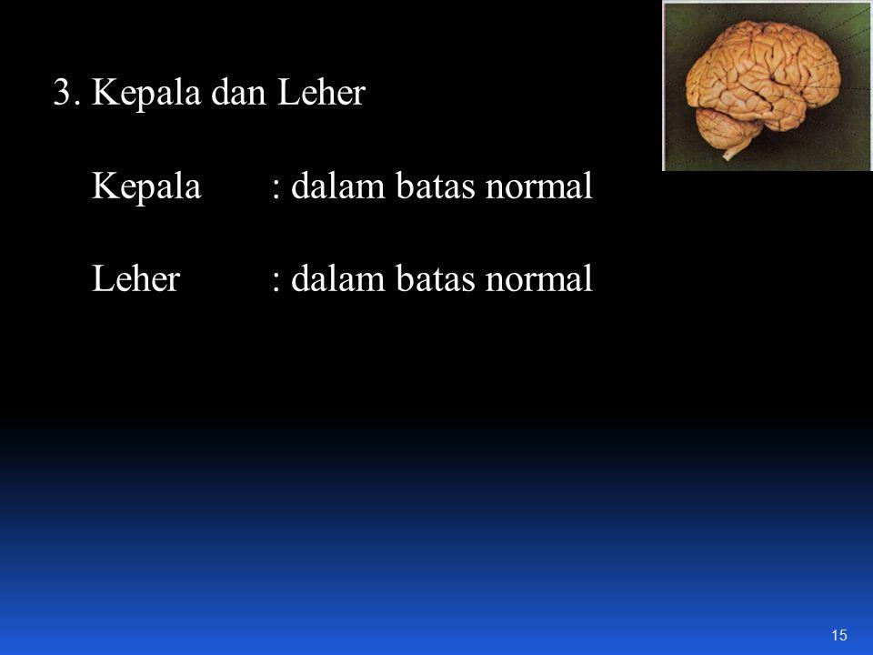 3. Kepala dan Leher Kepala : dalam batas normal Leher : dalam batas normal 15