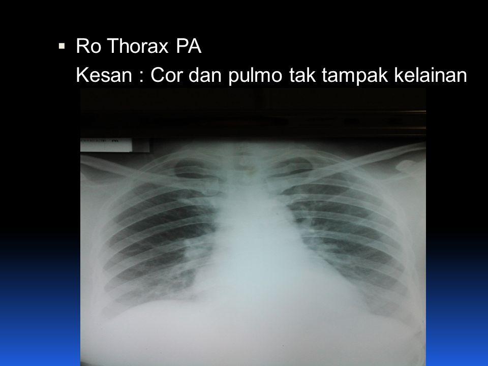  Ro Thorax PA Kesan : Cor dan pulmo tak tampak kelainan