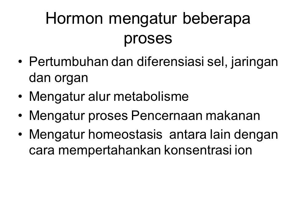 Hormon mengatur beberapa proses Pertumbuhan dan diferensiasi sel, jaringan dan organ Mengatur alur metabolisme Mengatur proses Pencernaan makanan Meng