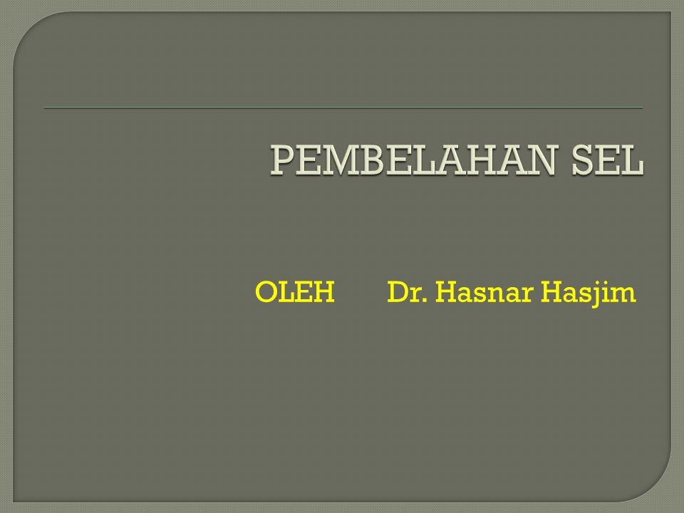 OLEH Dr. Hasnar Hasjim