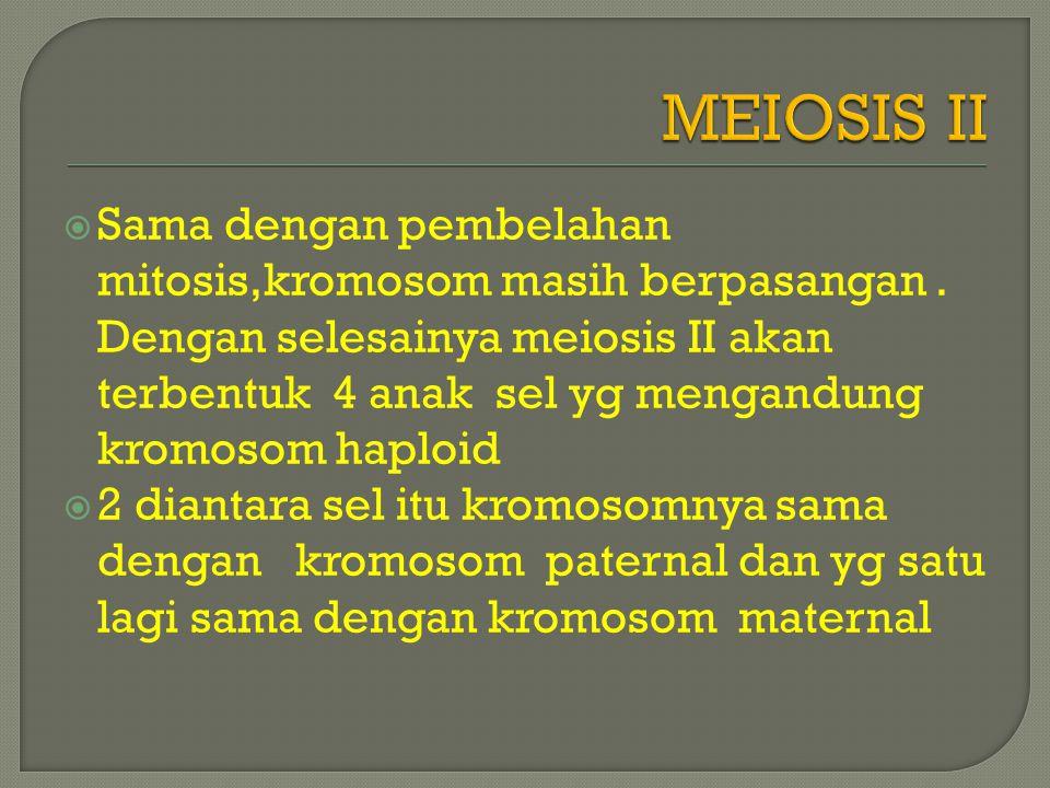  Sama dengan pembelahan mitosis,kromosom masih berpasangan.
