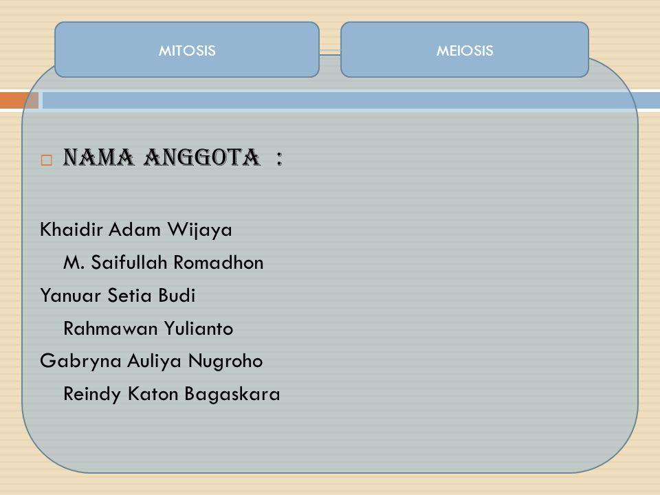  Nama Anggota : Khaidir Adam Wijaya M. Saifullah Romadhon Yanuar Setia Budi Rahmawan Yulianto Gabryna Auliya Nugroho Reindy Katon Bagaskara MITOSISME