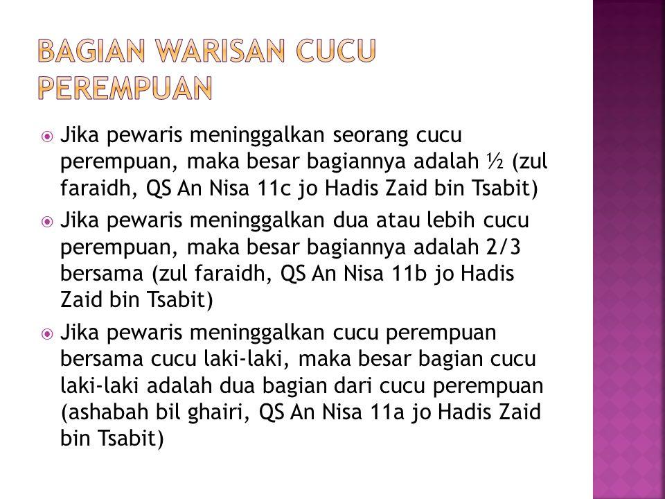 Jika pewaris meninggalkan seorang cucu perempuan, maka besar bagiannya adalah ½ (zul faraidh, QS An Nisa 11c jo Hadis Zaid bin Tsabit)  Jika pewaris meninggalkan dua atau lebih cucu perempuan, maka besar bagiannya adalah 2/3 bersama (zul faraidh, QS An Nisa 11b jo Hadis Zaid bin Tsabit)  Jika pewaris meninggalkan cucu perempuan bersama cucu laki-laki, maka besar bagian cucu laki-laki adalah dua bagian dari cucu perempuan (ashabah bil ghairi, QS An Nisa 11a jo Hadis Zaid bin Tsabit)