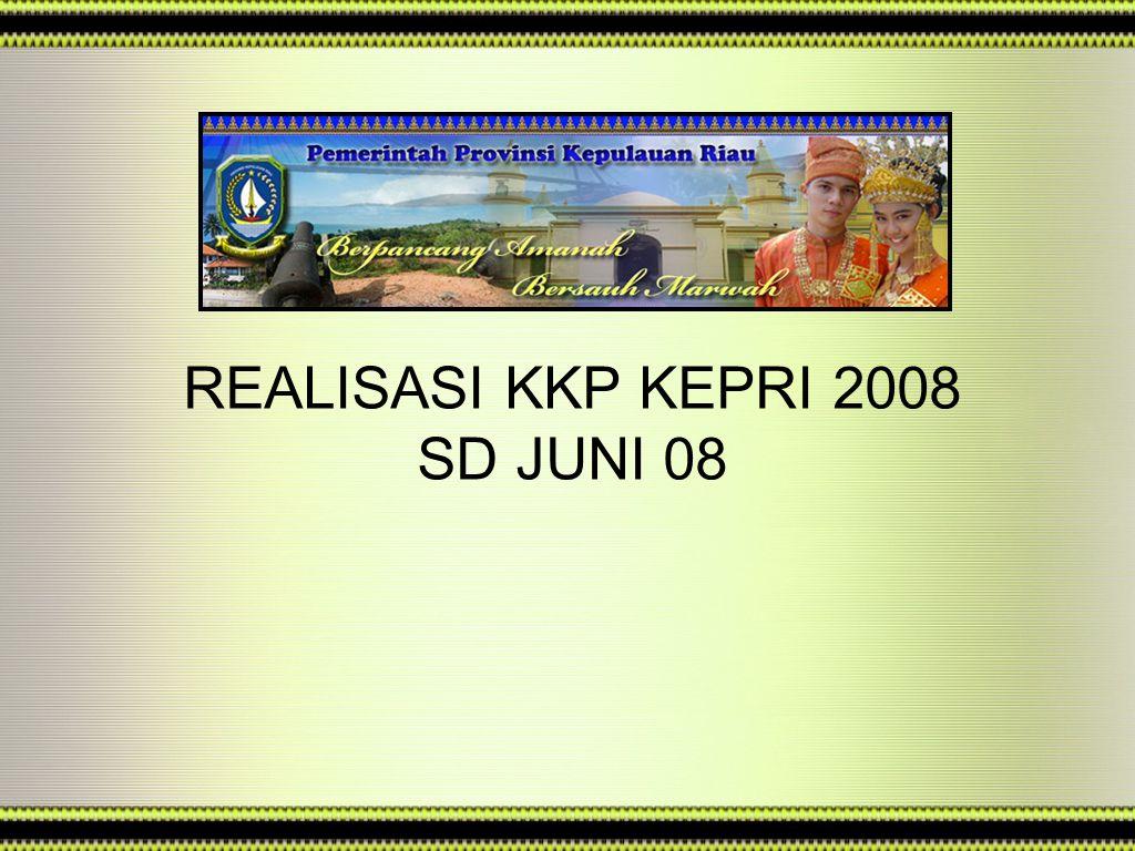 REALISASI KKP KEPRI 2008 SD JUNI 08