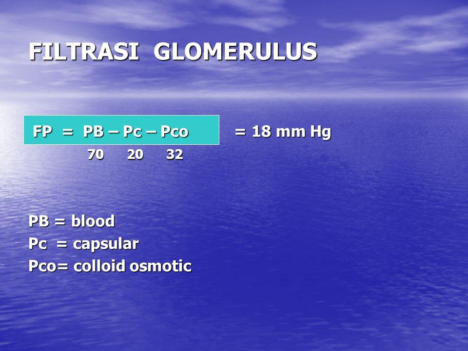 FILTRASI GLOMERULUS FP = PB – Pc – Pco = 18 mm Hg FP = PB – Pc – Pco = 18 mm Hg 70 20 32 70 20 32 PB = blood Pc = capsular Pco= colloid osmotic