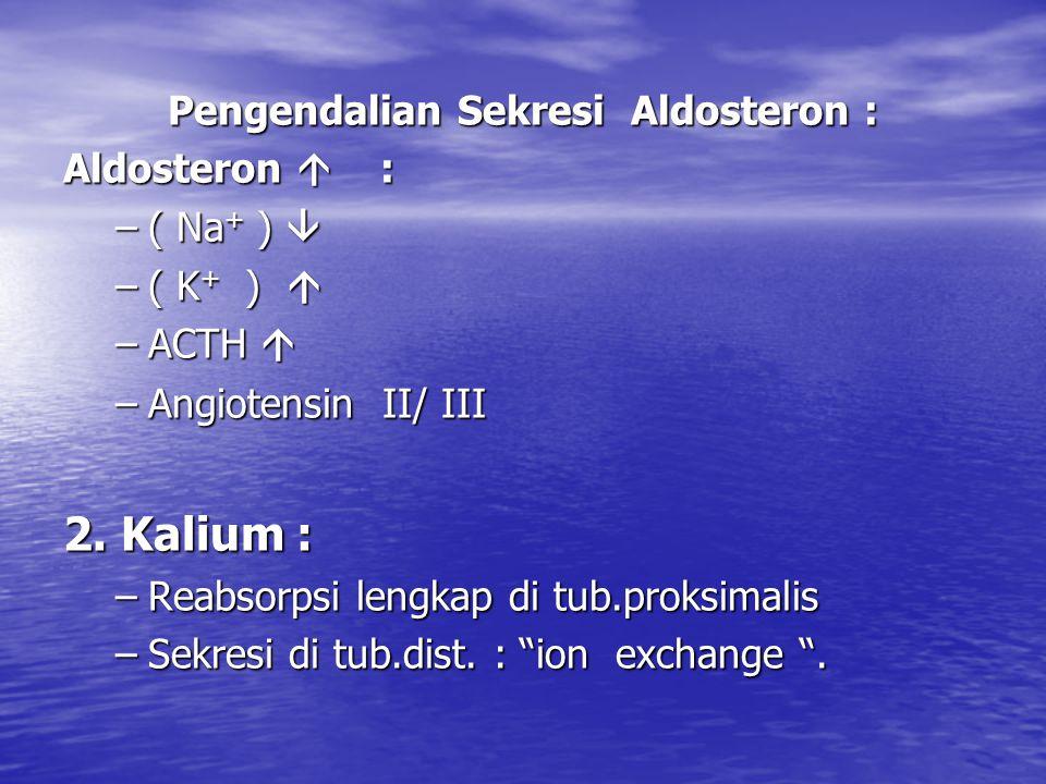 Pengendalian Sekresi Aldosteron : Aldosteron  : –( Na + )  –( K + )  –ACTH  –Angiotensin II/ III 2.